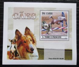 Poštovní známka Svatý Tomáš 2010 Psi DELUXE Mi# 4643 Block