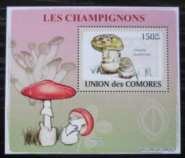 Poštovní známka Komory 2009 Houby DELUXE Mi# 2080 Block
