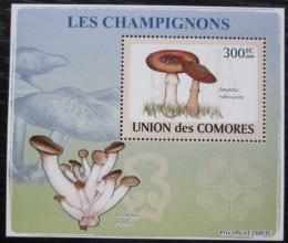 Poštovní známka Komory 2009 Houby DELUXE Mi# 2082 Block