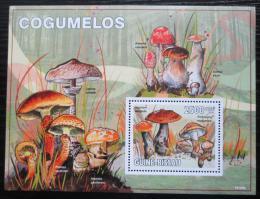 Poštovní známka Guinea-Bissau 2010 Houby Mi# Block 752 Kat 10€