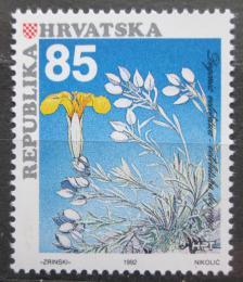Poštovní známka Chorvatsko 1992 Degenia velebitica Mi# 206