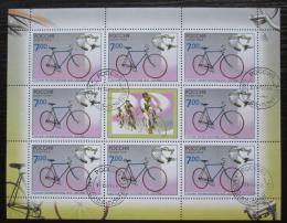Poštovní známky Rusko 2008 Cyklistika Mi# 1519 Bogen Kat 10€