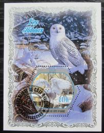 Poštovní známka Pobøeží Slonoviny 2018 Sovy Mi# N/N