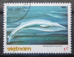 Poštovní známka Vietnam 1985 Plejtvák obrovský Mi# 1627