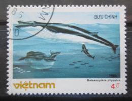 Poštovní známka Vietnam 1985 Plejtvák myšok Mi# 1631