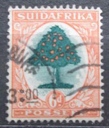 Poštovní známka JAR 1926 Pomeranèovník Mi# 28