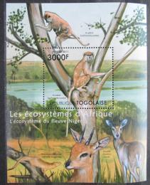 Poštovní známka Togo 2011 Fauna øeky Niger Mi# Block 649 Kat 12€