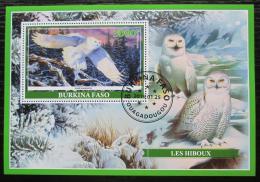 Poštovní známka Burkina Faso 2019 Sovy Mi# N/N