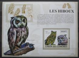 Poštovní známka Komory 2009 Sovy Mi# Block 485 Kat 15€