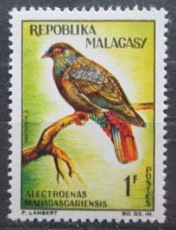 Poštovní známka Madagaskar 1963 Holub èervenoocasý Mi# 495