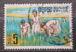 Poštovní známka Cejlon, Srí Lanka 1969 Sbìr rýže Mi# 393 Kat 7€