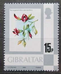 Poštovní známka Gibraltar 1980 Ledenec nachový Mi# 415