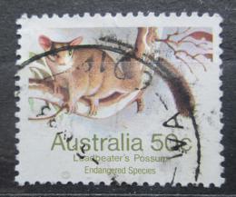 Poštovní známka Austrálie 1981 Vakoveverka bezblaná Mi# 758 A