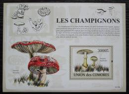Poštovní známka Komory 2009 Houby Mi# Block 469 Kat 15€