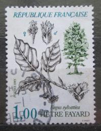 Poštovní známka Francie 1985 Buk lesní Mi# 2514