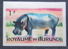Poštovní známka Burundi 1964 Hroch obojživelný neperf. Mi# 88 B