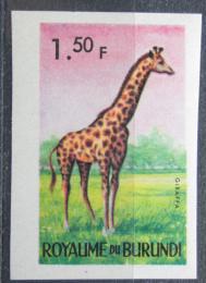 Poštovní známka Burundi 1964 Žirafa mramorovaná neperf. Mi# 89 B