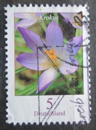 Poštovní známka Nìmecko 2005 Šafrán Tommasiniho Mi# 2480 A