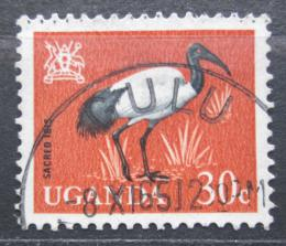 Poštovní známka Uganda 1965 Ibis posvátný Mi# 91