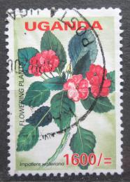 Poštovní známka Uganda 2005 Netýkavka Wallerova Mi# 2623