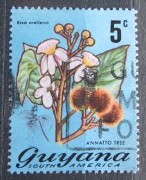 Poštovní známka Guyana 1971 Oreláník barvíøský Mi# 398
