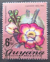 Poštovní známka Guyana 1971 Lonèatník guyanský Mi# 399