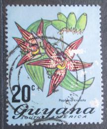Poštovní známka Guyana 1972 Paphinia cristata Mi# 402 A