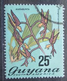 Poštovní známka Guyana 1972 Gongora quinquenervis Mi# 403 A Kat 10€
