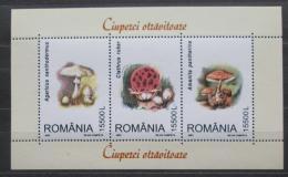 Poštovní známky Rumunsko 2003 Houby Mi# Block 332