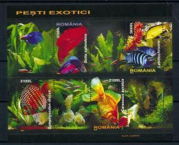 Poštovní známky Rumunsko 2005 Ryby Mi# Block 351 Kat 10€