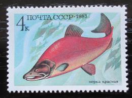 Poštovní známka SSSR 1983 Losos nerka Mi# 5294