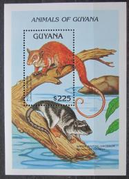 Poštovní známka Guyana 1992 Caluromys laniger Mi# Block 203 Kat 10€