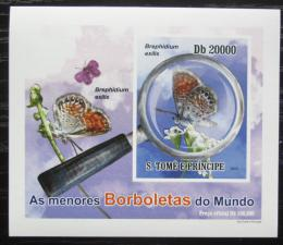 Poštovní známka Svatý Tomáš 2010 Motýli neperf. DELUXE Mi# 4559 B Block