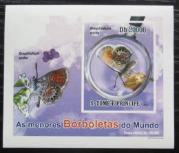 Poštovní známka Svatý Tomáš 2010 Motýli neperf. DELUXE Mi# 4560 B Block