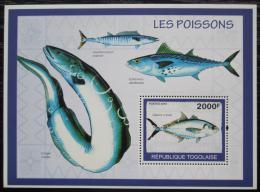 Poštovní známka Togo 2010 Ryby Mi# Block 494 Kat 8€