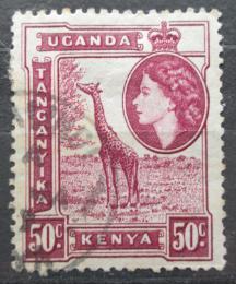 Poštovní známka K-U-T 1954 Žirafa mramorovaná Mi# 98