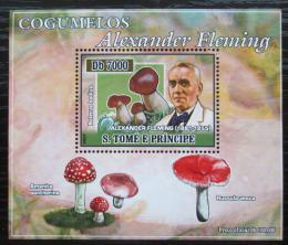 Poštovní známka Svatý Tomáš 2007 Houby, Alexander Fleming DELUXE Mi# 2968 Block