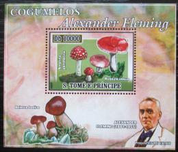 Poštovní známka Svatý Tomáš 2007 Houby, Alexander Fleming DELUXE Mi# 2970 Block