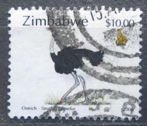 Poštovní známka Zimbabwe 2000 Pštros dvouprstý Mi# 667