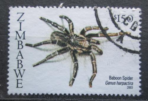 Poštovní známka Zimbabwe 2003 Pavouk, Harpactira Mi# 760