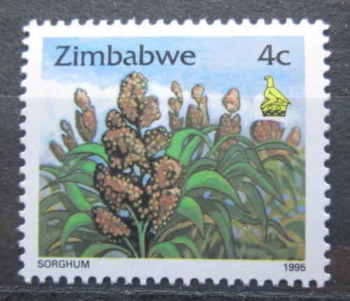 Poštovní známka Zimbabwe 1995 Pìstování èiroku Mi# 541