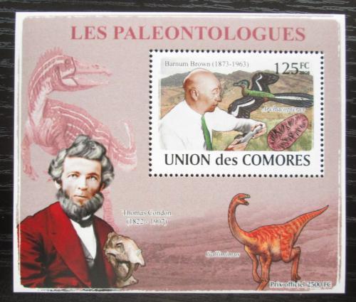Poštovní známka Komory 2009 Paleontologové a dinosauøi DELUXE Mi# 1960 Block