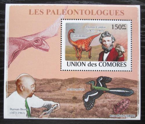 Poštovní známka Komory 2009 Paleontologové a dinosauøi DELUXE Mi# 1961 Block