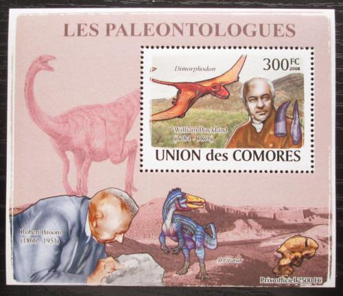 Poštovní známka Komory 2009 Paleontologové a dinosauøi DELUXE Mi# 1963 Block