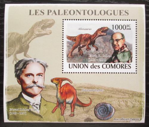 Poštovní známka Komory 2009 Paleontologové a dinosauøi DELUXE Mi# 1965 Block