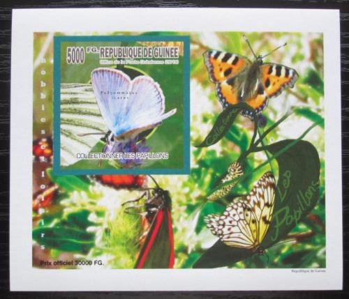 Poštovní známka Guinea 2010 Motýli neperf. DELUXE Mi# 7519 B Block