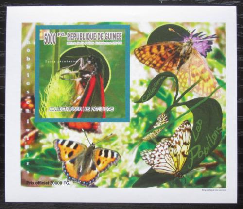 Poštovní známka Guinea 2010 Motýli neperf. DELUXE Mi# 7520 B Block