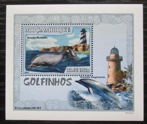 Poštovní známka Mosambik 2007 Delfíni a majáky DELUXE Mi# 3047 Block