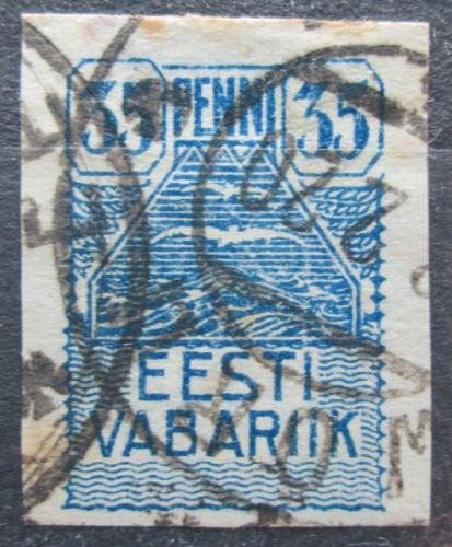 Poštovní známka Estonsko 1919 Racek Mi# 10