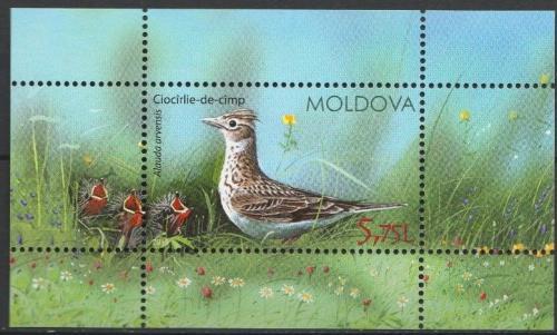 Poštovní známka Moldavsko 2015 Skøivan polní Mi# Block 70